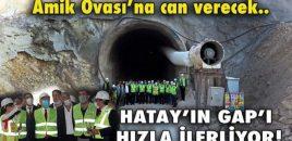 HATAY'IN GAP'I HIZLA İLERLİYOR!